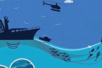 Pesca Azteca supera los retos del Covid – 19 y la crisis económica