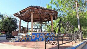 Camacho San Ignacio Zona Trópico Sinaloa México 2021 (4)