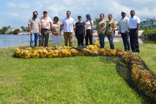 La contaminación de los océanos es una realidad: ¿Qué estamos haciendo al respecto? Caso Pesca Azteca