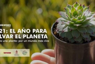 Convocan a ciudadanos a tomar acción en favor del medio ambiente