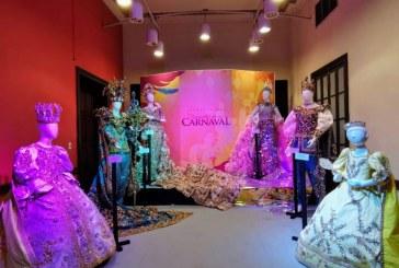 """El Anhelado sueño de """"Rigo Lewis"""" (Museo del Carnaval) podría ser una realidad"""