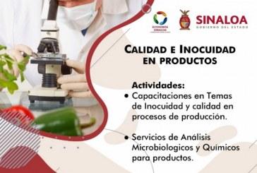 El Gobierno de Sinaloa pone en marcha programas en beneficio de MiPyMEs y emprendedores