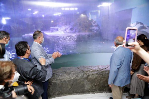 Inauguración Pinguinario de Mazatlán Autoridades 2021 2