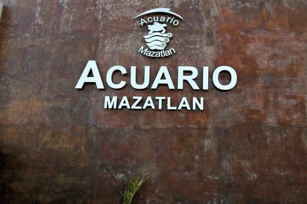Pinguinario Acuario Mazatlán Inauguración 2021 (1)