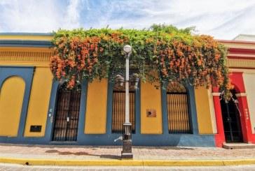 Así recibimos este 2021 la Primavera en Mazatlán y la Zona Trópico