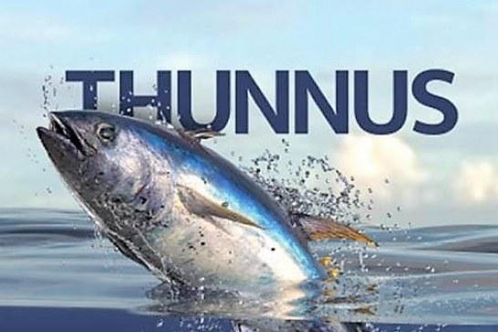 """Pesca Azteca Lanza El Libro """"Thunnus"""" en el Marco del Día Mundial del Atún"""