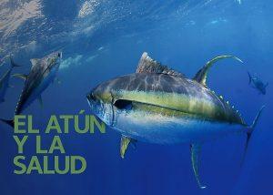 Thunnus Libro de Pesca Azteca Día Mundial del Atún 2021 (3)