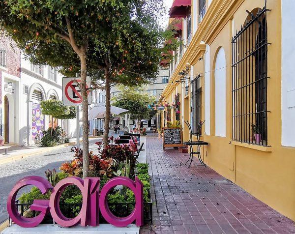 V Aniversario Gaia Bistró Mazatlán Centro Histórico Mazatlán Gilberto del Troro Chef 2021 Chef del Toro y Familia 1