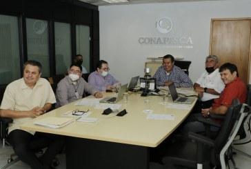Conapesca y Cofepris buscan mecanismos para lograr certificación de plantas procesadoras de medusa bola de cañón