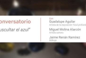 """Este jueves 13, el conversatorio """"Auscultar el azul"""""""