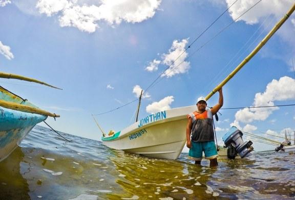 Cierra registro Conapesca para obtener permisos de pesca comercial en el país