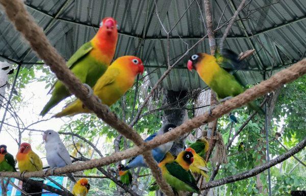 Familia Disfrutando de Mazatlán Olas Altas con Todas las Medidas de Seguridad Felicidades Vamos pro el Verde 2021 1