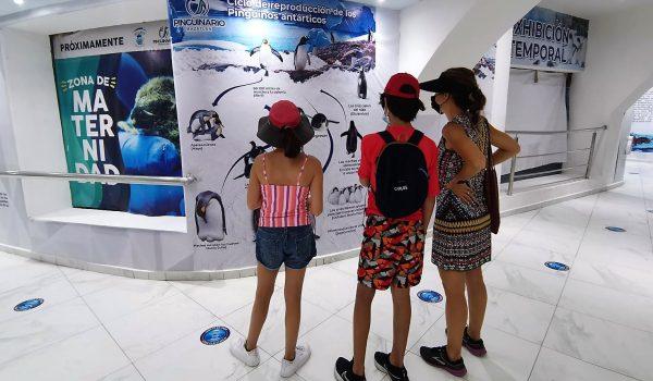 Mazatlán mantendrá abiertas totalmente las actividades turísticas durante toda la temporada de verano 2021 1