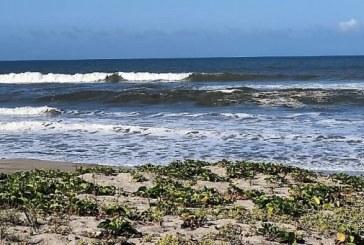 Sinaloa busca el liderazgo nacional de Playas Limpias: Impulsan recertificación de Ceuta