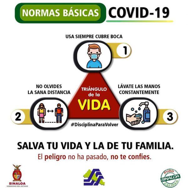 Triangulo de la Vida Covid 10 Sinaloa 2021 a