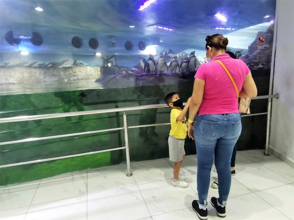 Turistas pueden divertirse en Mazatlán pero con las medidas preventivas 2021 1
