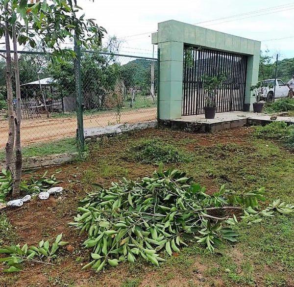 Asegura PC Mazatlán que no hay condiciones para clases presenciales 3