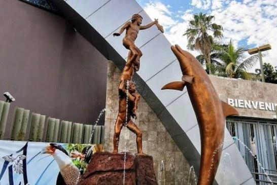 41 Aniversario de Acuario Mazatlán: Una Ventana al Mar