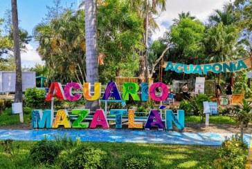 Con ceremonia íntima, celebrará Acuario Mazatlán 41 Aniversario