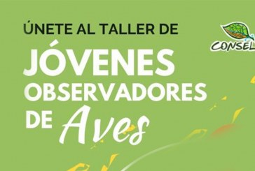 Invitan a  talleres gratuitos de observación de aves migratorias