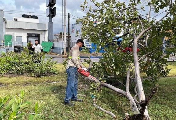 """Avanza restablecimiento de Mazatlán tras el paso del huracán """"Pamela"""""""