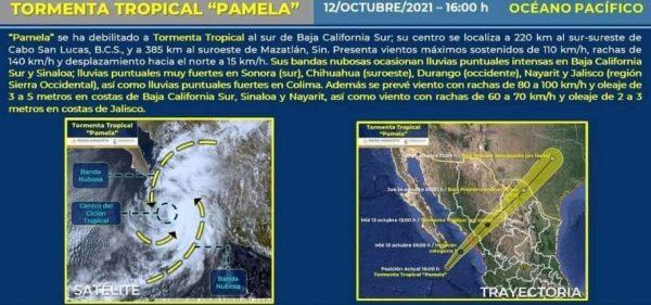 Pamela Informe Vespertino 2021 1