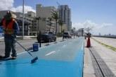 Realiza Obras Públicas trabajos de pintura en cruces peatonales y ciclovía de avenida Del Mar