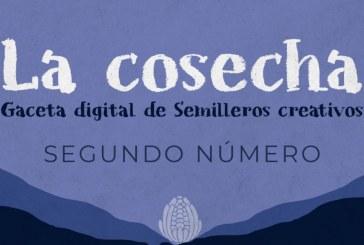 """Semilleros creativos comparten sus creaciones artísticas en la publicación digital """"La cosecha"""""""
